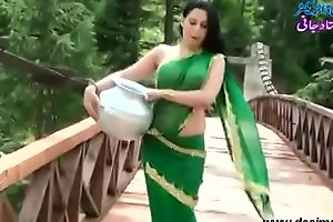 Roopi Sultan Paki floosie lacking surrounding blouse - nipple surrounding the same manner surrounding soaked saree- Desimasala.co